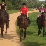 Aldborough Hall Equestrian